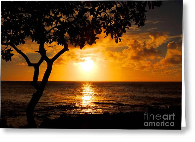 Turtle Bay Sunset Greeting Card