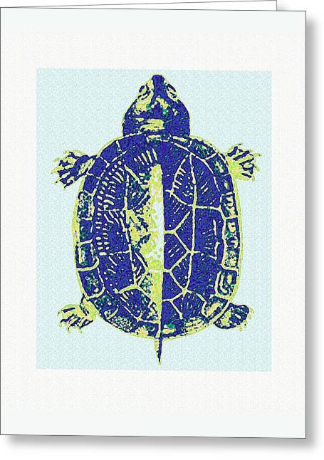 Turtle Greeting Card by Jane Schnetlage