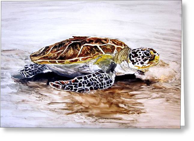 Turtle On The Beach Greeting Card by Maris Sherwood
