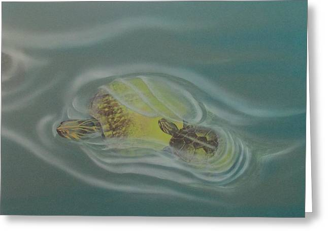 Turtle Pond Iv Greeting Card
