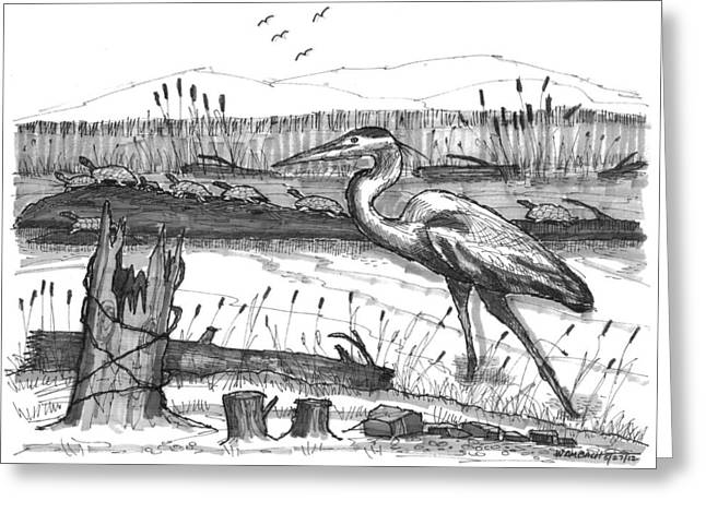 Turtles And Heron Greeting Card