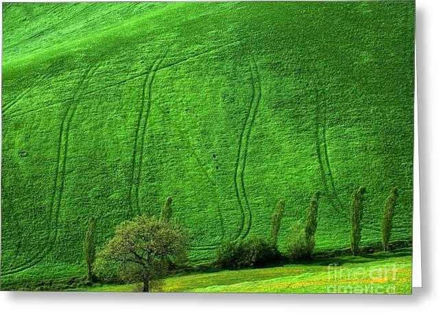 Tuscan Hills 05 Greeting Card by Giorgio Darrigo