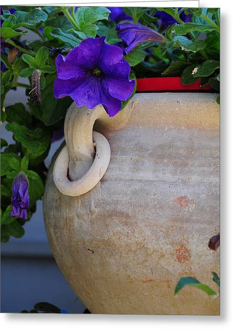 Tuscan Pot Greeting Card