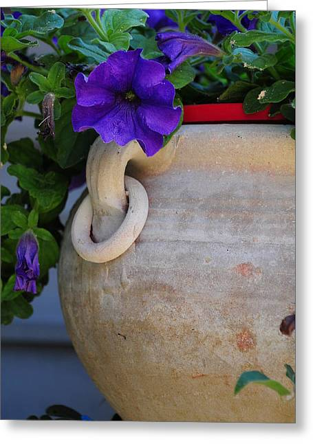 Tuscan Pot Greeting Card