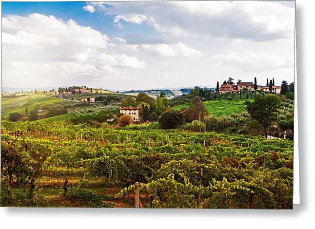 Tuscany Italy Vineyard And Countryside Greeting Card by Susan Schmitz