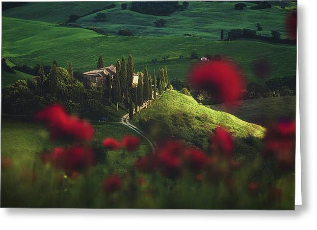 Tuscany - Spring Blossoms Greeting Card