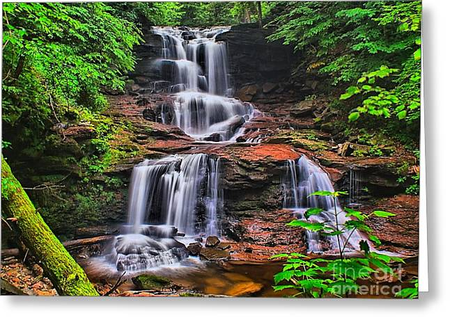 Tuscarora Falls In Spring- Ricketts Glen Greeting Card by Nick Zelinsky