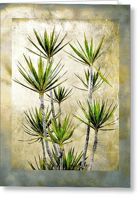Twiggy Palm Greeting Card by Stephen Warren