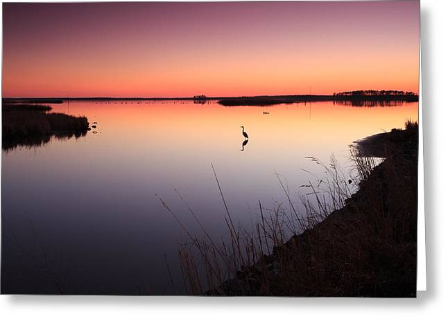 Greeting Card featuring the photograph Twilight At Blackwater Wlr by Jennifer Casey