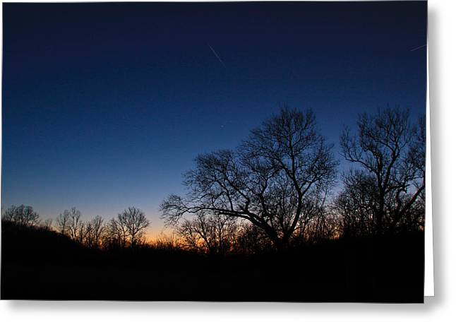 Twilight Dream Greeting Card by Julie Andel