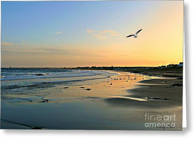 Twilight In Seaburn Greeting Card by Morag Bates