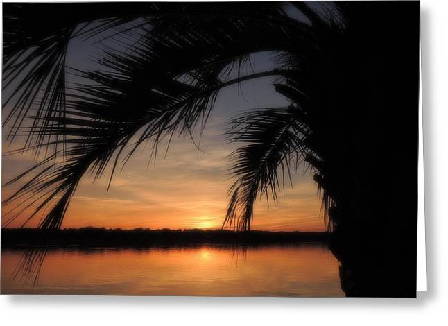 Twilight Moments Greeting Card by Teresa Schomig