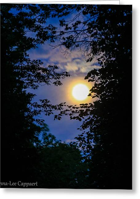 Twilight Moon Greeting Card by Anna-Lee Cappaert