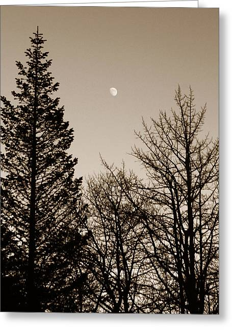 Twilight Moon Greeting Card by Marilyn Hunt