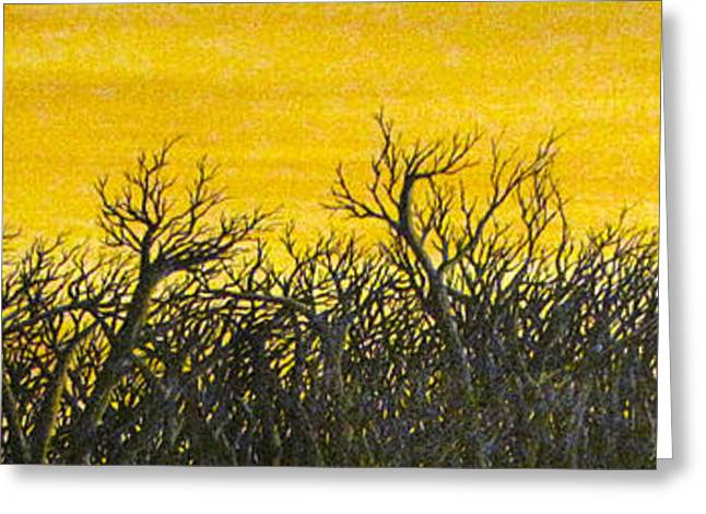 Twilight Partial Greeting Card by Erik Coryell