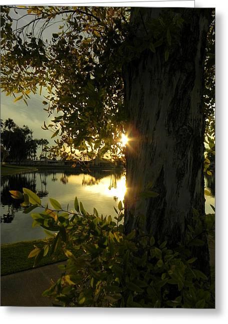 Greeting Card featuring the photograph Twilight Splendor by Deb Halloran