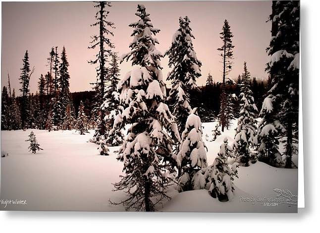 Twilightwinter Greeting Card