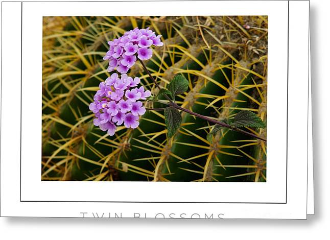 Twin Blossoms Poster Greeting Card