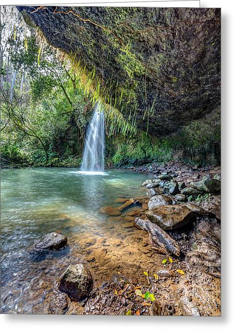 Twin Falls Sunlight Greeting Card by Pierre Leclerc Photography