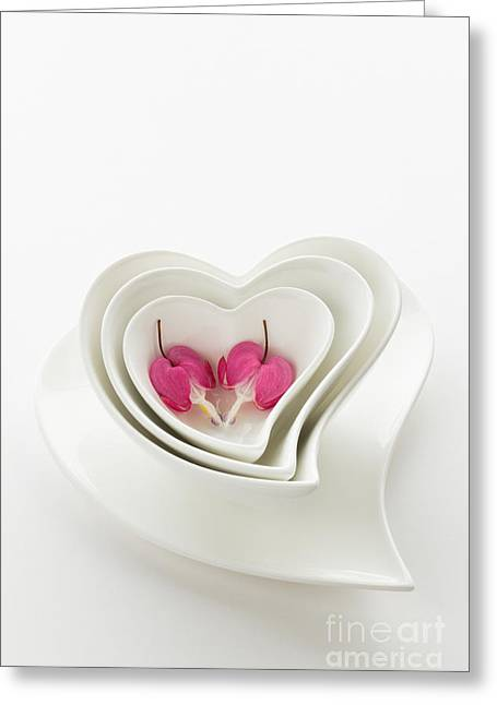 Twin Hearts 2 Greeting Card