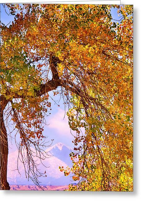 Twin Peaks - Longs Peak And Mt  Meeker Colorful Autumn View Greeting Card