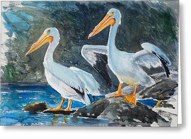 Da208 Twin Pelicans By Daniel Adams Greeting Card