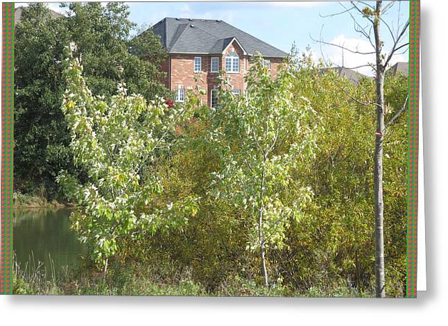 Twin Saplings Ready For The Fall Season Backdrop Of A Villa And Blue Skies         Greeting Card