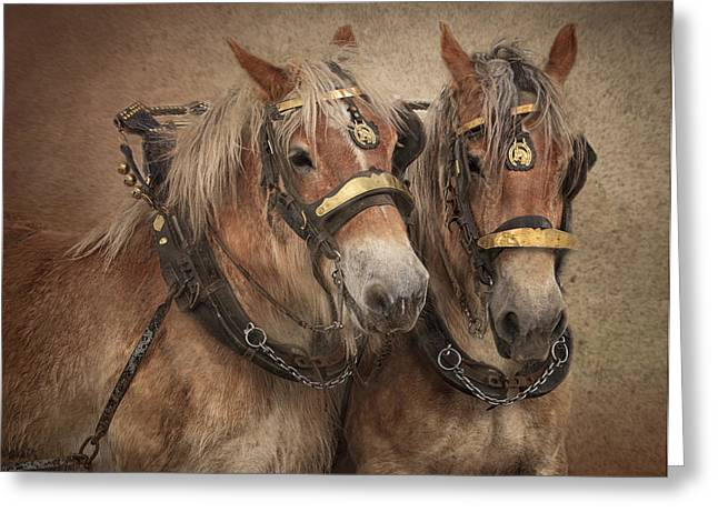 Twin Team Greeting Card by Gigi Embrechts