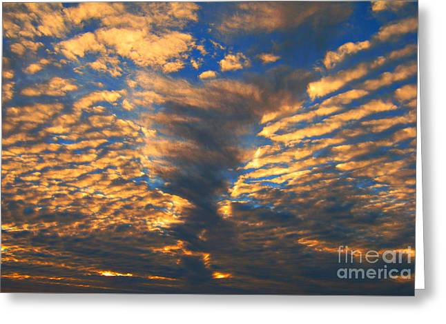 Twisted Sunset Greeting Card by Janice Westerberg