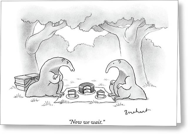 Two Anteaters On A Picnic Wait For Ants To Come Greeting Card
