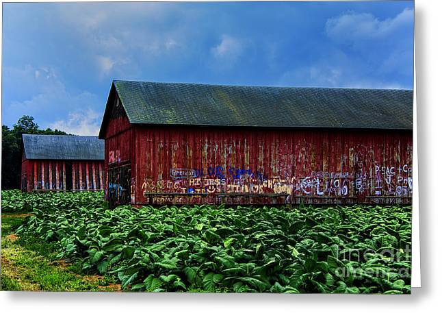 Two Barns Ready Greeting Card by Rick Bragan