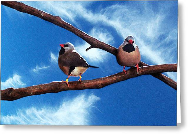 Two Birds Greeting Card by Shawna Rowe