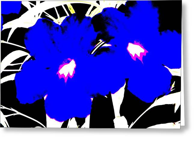 Two Blue Jack Flowers Greeting Card