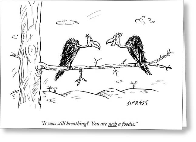 Two Buzzards Sit And Talk On A Branch Greeting Card