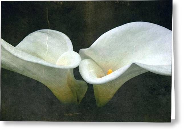 Two Greeting Card by Cathie Tyler
