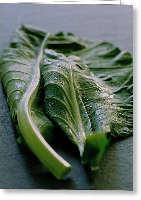 Two Collard Leaves Greeting Card by Romulo Yanes