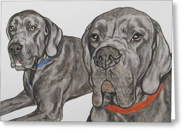 Two Cool Danes Greeting Card by Megan Cohen