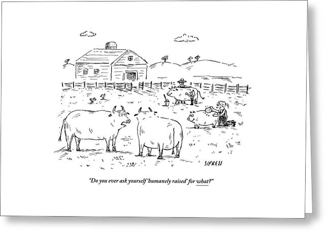 Two Cows On A Farm Talking Greeting Card by David Sipress