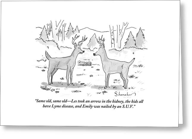 Two Deer In A Forest Are Seen In Conversation Greeting Card by Danny Shanahan
