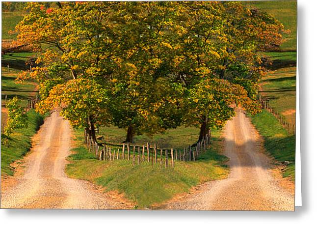 Two Dirt Roads Passing Through Farms Greeting Card by Panoramic Images