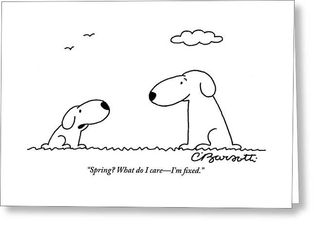 Two Dogs Are Seen Talking To Each Other Greeting Card