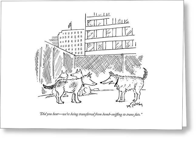 Two Dogs In A Kennel Speak To Each Other Greeting Card