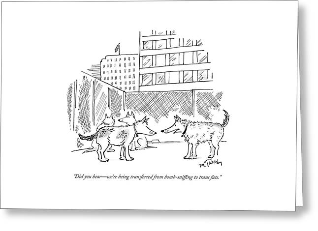 Two Dogs In A Kennel Speak To Each Other Greeting Card by Mike Twohy