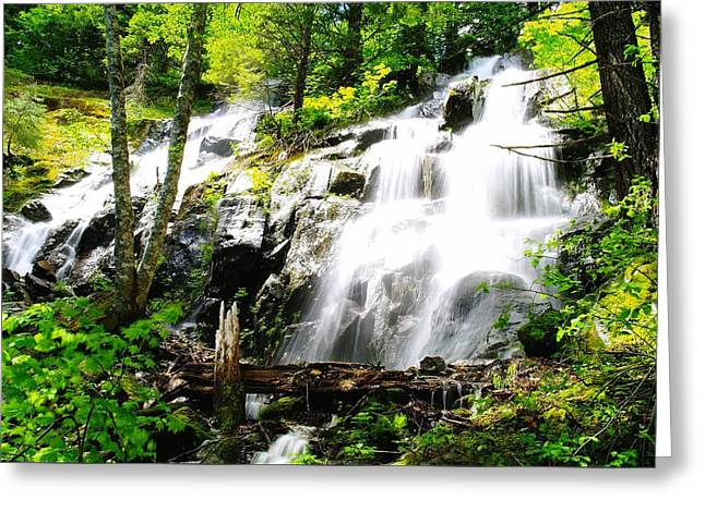 Two Falls  Greeting Card by Jeff Swan