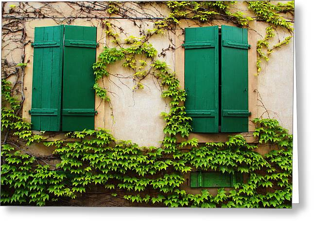 Two Green Shutters And Ivy In Alsace Greeting Card