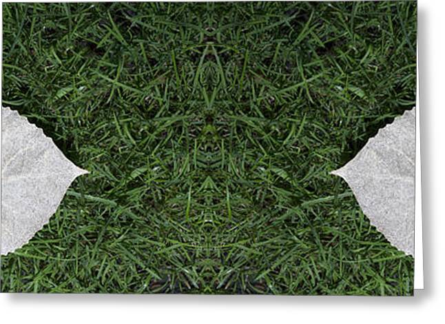 Two Heart Leaves In The Green Grass Greeting Card