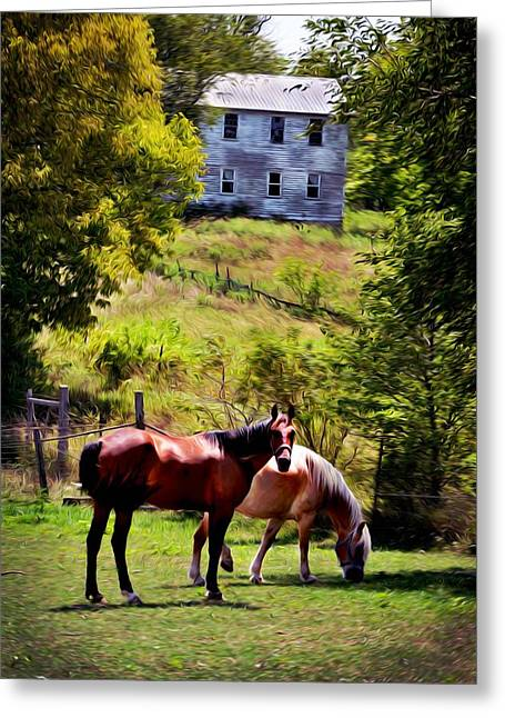 Two Horse Amish Town Greeting Card