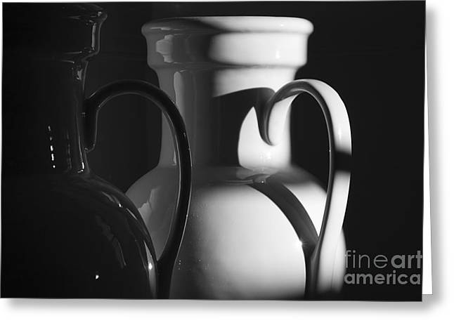 Two In Black And White Greeting Card by Terry Rowe