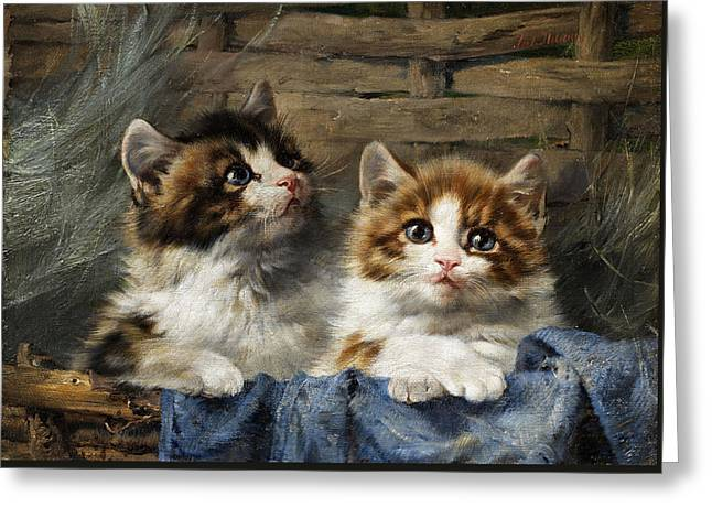 Two Kittens In A Basket With Blue Cloth Greeting Card by Julius Adam
