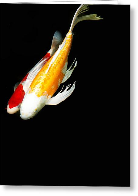 Two Koi Together Greeting Card by Rebecca Cozart